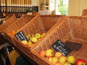 Umweltschutz: Obst und Gemüse kommen ausschließlich aus der Region