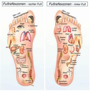 Entspannte Füße: Reflexzonen: Jedes Fußareal wird einem Organ zugeordnet