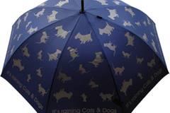 """Schirm """"It's raining Cats & Dogs"""" von Moschino, um 70 Euro. Gibt's auch in Rot und Schwarz. Zu Bestellen über  www.regenschirme.de"""