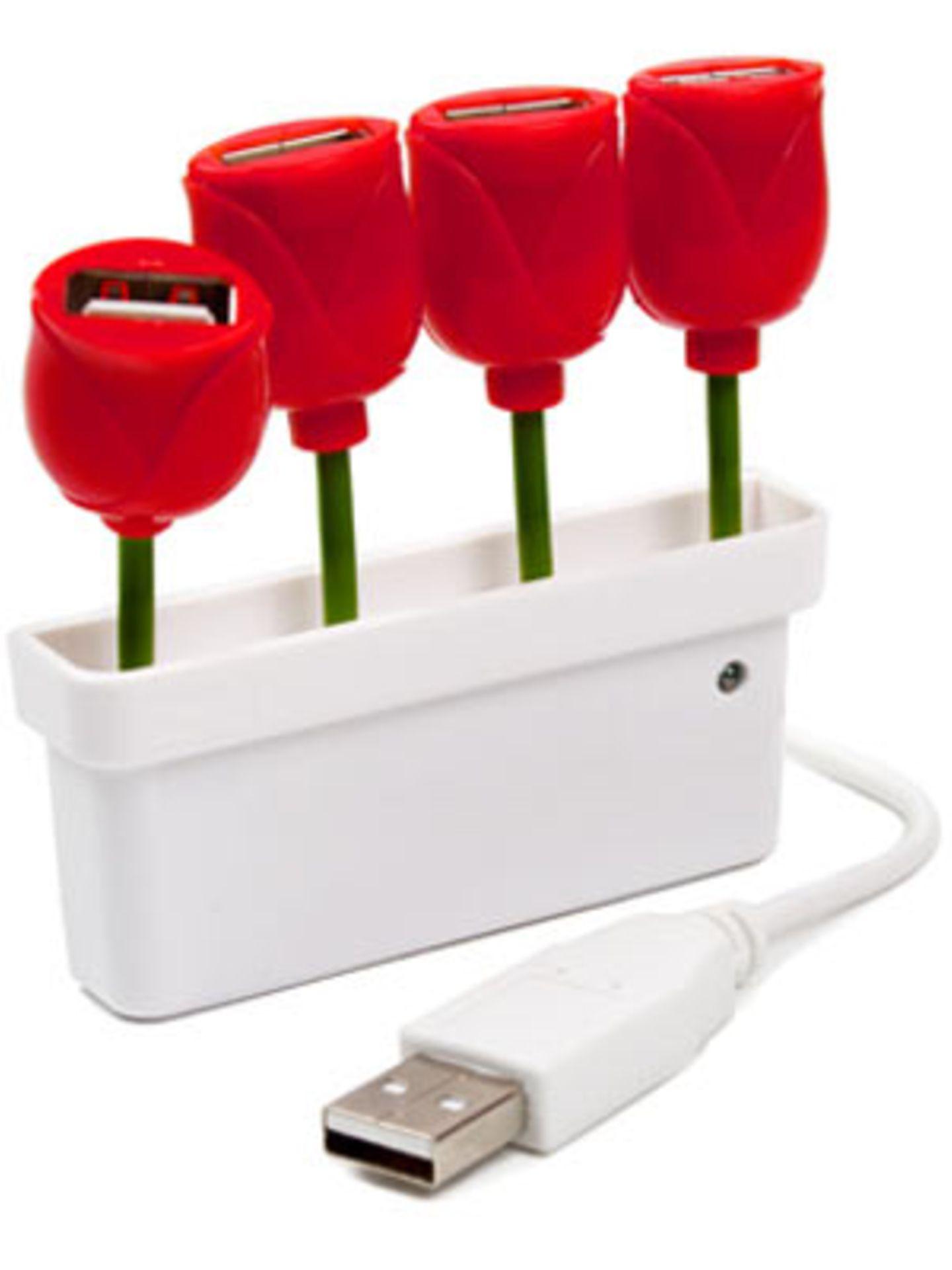 USB-Stick mit frühlingshaften Tulpen von fredflare.com, um 25 Euro.