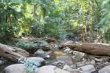 Eine Dschungellichtung im Nordwesten Thailands nahe des kleinen Ortes Pai.