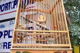 Singvögel in Bambuskäfigen sind unterhaltsame Glücksbringer für viele Thailänder.