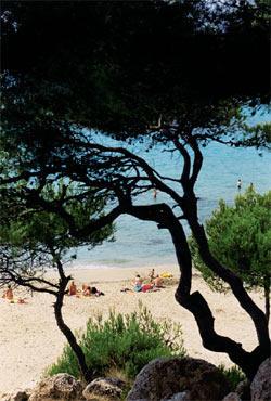 Fotoshow: Marseille, das Meer und andere Träume