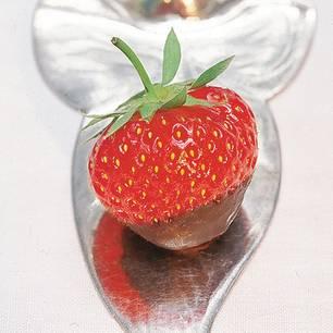 Saftige Erdbeeren in einer knackigen Schokoladenhülle - eine verführerische Kombination aus Frucht und Schokolade. Zum Rezept: Erdbeeren mit Schokoladenüberzug