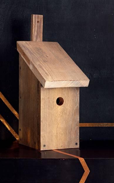 Vogelhäuschen selber bauen