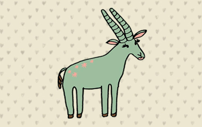 Auf dem Bild oben seht ihr die Gazelle. Sie steht für die erste Untergruppe bei den Frauen, die eine kurze Vagina haben.