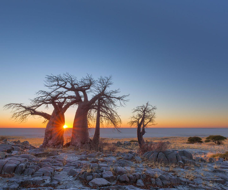 """Platz 1: Botswana Mit diesem Spitzenreiter hätte wohl niemand gerechnet! Ausgerechnet Botswana soll das Top-Reiseziel 2016 sein? Aber ja, wenn man liest, was die """"Lonely Planet""""-Experten meinen, macht die Wahl absolut Sinn: """"Mit seiner ungewöhnlichen Kombination von Wüste und Flussdelta, das viele wild lebende Tiere anzieht, ist Botswana ein einmaliges Reiseziel. Es ist wild, ursprünglich und weitläufig. 17 % des Landes bestehen aus Nationalparks, von denen viele in die riesigen transnationalen Naturschutzgebiete Kavango-Sambesi und Kgalagadi übergehen. Die Bestrebungen des Landes, einige der letzten Wildnisse der Welt zu erhalten, wurden schließlich 2014 auch von der Unesco anerkannt, die das Okavango-Delta – Botswanas landschaftliches Kronjuwel – zu ihrem 1000. Welterbe machte."""""""