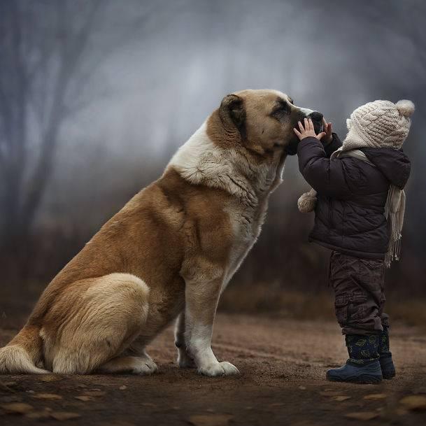 """Zauberhafte Bilder: Barfuß durchs Gras rennen, dick eingemummelt Schlitten fahren, mit dem Lieblingshasen zwischen Strohballen kuscheln: Elena Shumilova weckt in uns das dringende Verlangen, noch einmal Kind sein zu dürfen. Mit ihren zauberhaften Bildern gibt die russische Künstlerin Einblicke in ihr Familienleben auf dem Land. Ihre beiden Söhne wachsen mit Hund, Katze, Küken und Hasen auf - und sehen dabei wunderbar glücklich aus. Das Licht, die wechselnden Jahreszeiten, die unberührte Natur: Am liebsten würden wir sofort Reißaus nehmen und mit den Jungs um die Wette toben. Bei ihren Aufnahmen vertraut Elena Shumilova auf ihre Intuition - und macht damit alles richtig. """"Ich liebe alle Arten von Lichtverhältnissen - Straßenlicht, Kerzenlicht, Nebel, Rauch, Regen und Schnee. All das gibt einem Bild visuelle und emotionale Tiefe"""", sagt Shumilova. Mit dem Fotografieren fing die Architektin erst 2012 an. Inzwischen greift sie täglich zur Kamera. Ein Glück! Mehr Bilder von Elena Shumilova gibt es auf ihrer Website."""