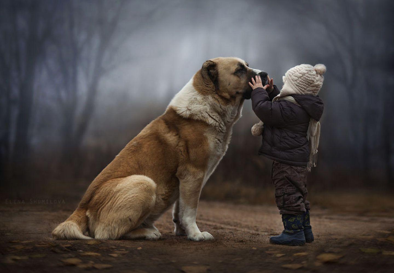"""Barfuß durchs Gras rennen, dick eingemummelt Schlitten fahren, mit dem Lieblingshasen zwischen Strohballen kuscheln: Elena Shumilova weckt in uns das dringende Verlangen, noch einmal Kind sein zu dürfen. Mit ihren zauberhaften Bildern gibt die russische Künstlerin Einblicke in ihr Familienleben auf dem Land. Ihre beiden Söhne wachsen mit Hund, Katze, Küken und Hasen auf - und sehen dabei wunderbar glücklich aus. Das Licht, die wechselnden Jahreszeiten, die unberührte Natur: Am liebsten würden wir sofort Reißaus nehmen und mit den Jungs um die Wette toben. Bei ihren Aufnahmen vertraut Elena Shumilova auf ihre Intuition - und macht damit alles richtig. """"Ich liebe alle Arten von Lichtverhältnissen - Straßenlicht, Kerzenlicht, Nebel, Rauch, Regen und Schnee. All das gibt einem Bild visuelle und emotionale Tiefe"""", sagt Shumilova. Mit dem Fotografieren fing die Architektin erst 2012 an. Inzwischen greift sie täglich zur Kamera. Ein Glück! Mehr Bilder von Elena Shumilova gibt es auf ihrer Website."""