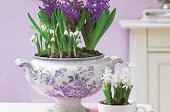 Suppenterrinen und Tassen als Vasen