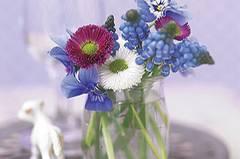 Joghurtgläschen mit Blumen