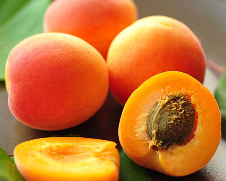 Aprikose - die Beauty-Expertin