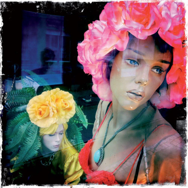 """""""Blumenfeen"""" von Carsten Peter"""