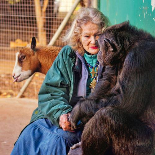 Händchenhaltend sitzen Pat und Kalu nachmittags auf einer Bank. Pat hat der Schimpansin ihren Rest-Besitz vermacht.