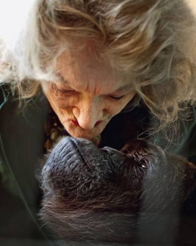 Zwei Damen, die sich innig lieben: Pat und Kalu, die Schimpansin.