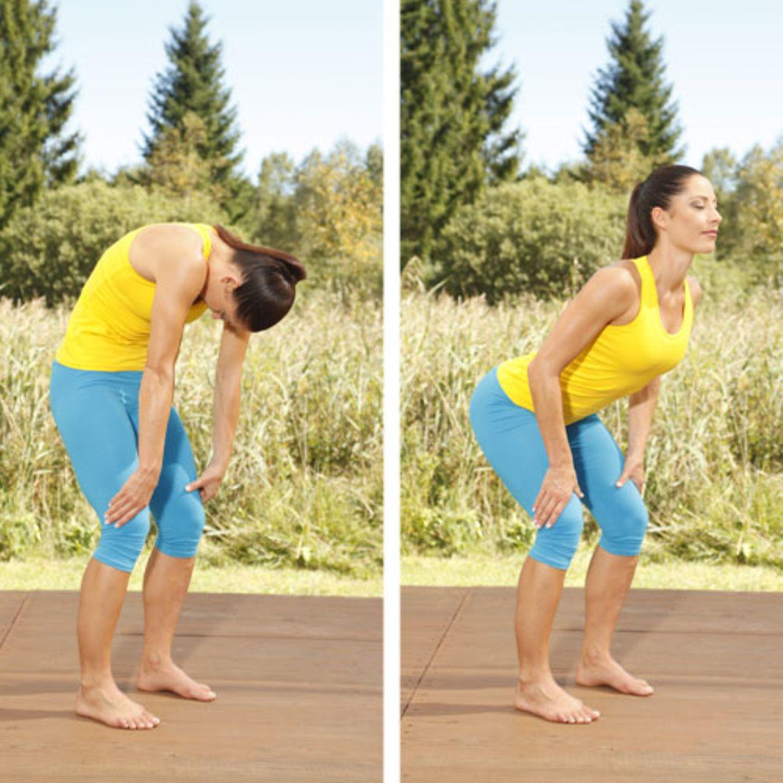 Sie bestehen hauptsächlich aus Kollagenfasern und durchziehen unseren ganzen Körper: Faszien umhüllen und stützen alle Organe und Muskeln. Für unsere Gesundheit und Fitness spielen sie eine wichtige Rolle, denn sie schützen unsere Muskulatur vor Verletzungen und helfen uns beim Gehen und Rennen. Grund genug, unserem Bindegewebe etwas mehr Aufmerksamkeit zu schenken! Denn bleibt es geschmeidig und elastisch, kommt es beim Sport seltener zu Zerrungen oder Verspannungen. Auch ein Muskelkater danach ist weniger wahrscheinlich. Diese Übungen mobilisieren, stärken und entspannen Ihren Körper. Und sie helfen dabei, sämtliche Strukturen beweglich und gleitfähig zu machen. Das Faszientraining bringt Energie, formt die Figur und ist gut für Gelenke und Rücken. Los geht's: Wirbelsäule mobilisieren Stellen Sie sich mit hüftbreit geöffneten Beinen hin. Die Knie sind leicht angebeugt, die Hände stützen oberhalb der Knie auf den Oberschenkel. Machen Sie einen Katzenbuckel und strecken Sie anschließend den Rücken wieder. Wiederholen Sie die Mobilisierung Ihrer Wirbelsäule acht Mal.
