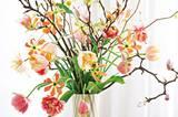 Magnolien- und Scheinhaselzweige