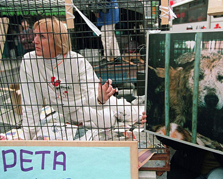 """""""Es ist so einfach, etwas zu ändern"""", sagt Ingrid Newkirk. """"Zum Beispiel Essen zu finden, für das niemand sterben musste. Es geht um Güte, um Mitgefühl."""" Dass die Aktionen von """"Peta"""" umstritten sind und viele ihre Ideale für unerreichbar halten, beirrt sie nicht. """"Ich bin keine Träumerin. Diese totale Gleichberechtigung ist nicht möglich. Aber ich möchte so viel Respekt für Tiere, wie es eben geht."""" Wie radikal darf Tierschutz sein? Diskutieren Sie über """"Peta"""" in der BRIGITTE Community"""