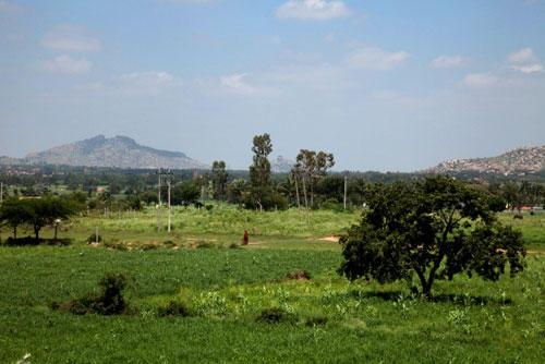 Ein Besuch: Eine Autostunde von Bangalore entfernt liegt in ländlicher Umgebung Iyengars Heimatort: das 4000-Seelen-Dorf Bellur im südindischen Kolar District.