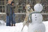 Haustiere: Jennifer Aniston und Owen Wilson mit Labrador