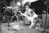 Haustiere: Lassie am Set