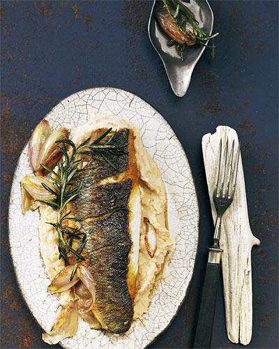 Der Wolfsbarsch wird in der Nordsee, im Ostatlantik und im Mittelmeer gefangen. Inzwischen kommt er hauptsächlich aus Aquakultur. Sein weißes festes Fleisch verträgt kräftige Aromen - wie Schalotten, Rosmarin und Bohnenpüree. Zum Rezept: Wolfsbarsch auf Bohnenpüree