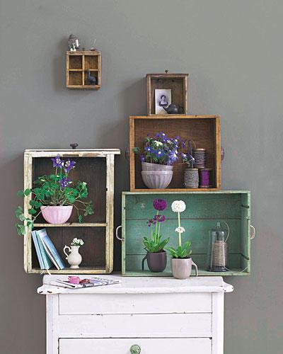 blumen fr hlingsblumen jetzt wird 39 s bunt. Black Bedroom Furniture Sets. Home Design Ideas