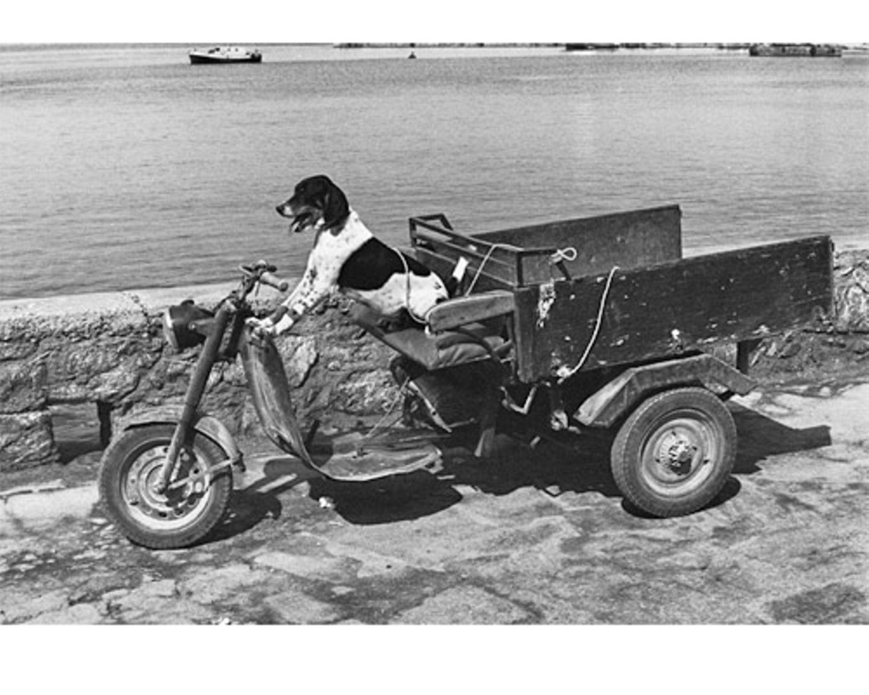 Volle Fahrt voraus. (Mikonos, Griechenland, 1976)