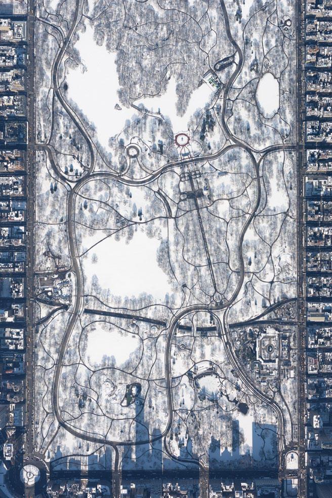 """""""Snowy Central Park at 10,000 feet"""""""