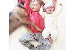 """Die Fotos von Theo und Beau sind so beliebt, dass sie inzwischen sogar als Buch herausgekommen sind, """"Naptime with Theo and Beau"""". Bestimmt werden noch einige Bücher dieser verschmusten Familie folgen. Vielleicht hat Theo ja Interesse daran, einen Welpen zu adoptieren?"""