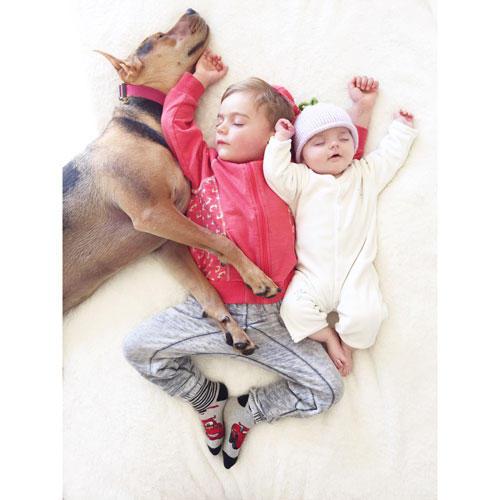 """Mittagsschlaf mit Hund: Die Fotos von Theo und Beau sind so beliebt, dass sie inzwischen sogar als Buch herausgekommen sind, """"Naptime with Theo and Beau"""". Bestimmt werden noch einige Bücher dieser verschmusten Familie folgen. Vielleicht hat Theo ja Interesse daran, einen Welpen zu adoptieren?"""