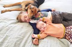 """Für den Hund Theo sind die Nickerchen offenbar genauso ein Highlight wie für die Kinder. """"Sobald es Mittag wird, wartet Theo schon im Zimmer auf Beau - was wir immer wieder unglaublich und bezaubernd finden."""""""