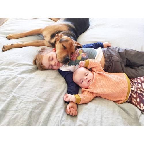 """Mittagsschlaf mit Hund: Für den Hund Theo sind die Nickerchen offenbar genauso ein Highlight wie für die Kinder. """"Sobald es Mittag wird, wartet Theo schon im Zimmer auf Beau - was wir immer wieder unglaublich und bezaubernd finden."""""""