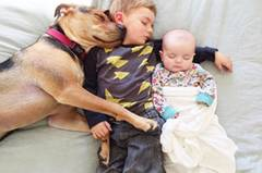 """Auf ihrem Blog beschreibt Jessica Shyba, wie sich das tägliche Ritual abspielt: """"Evangeline ist die erste, die ich schlafen lege. Sobald sie eingeschlafen ist, legen sich Beau und Theo dazu und ich bleibe bei ihnen, bis sie eingeschlafen sind. Sobald alle schlafen, lege ich Evvie näher zu den anderen beiden - denn sie schlafen wirklich alle besser mit einem anderen warmen Körper und einem sanften Herzschlag direkt neben ihnen."""""""