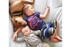Im Netz ist Jessica Shyba schon mit ihrer ersten Fotoreihe berühmt geworden - damals lag ihr Sohn Beau allein mit Theo im Bett, der noch ein Welpe war. Zur Freude ihrer Fans wird diese Tradition nun mit dem neuen Familiennachwuchs fortgesetzt.