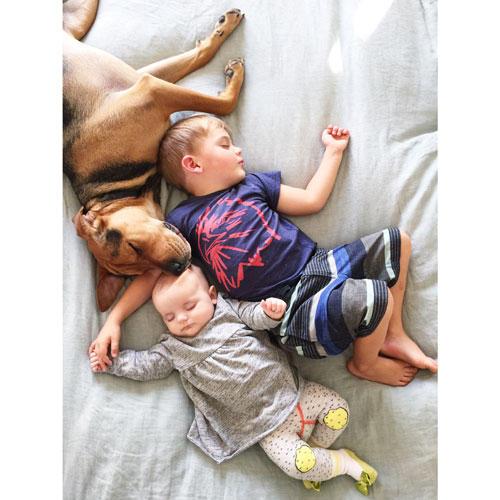 Mittagsschlaf mit Hund: Im Netz ist Jessica Shyba schon mit ihrer ersten Fotoreihe berühmt geworden - damals lag ihr Sohn Beau allein mit Theo im Bett, der noch ein Welpe war. Zur Freude ihrer Fans wird diese Tradition nun mit dem neuen Familiennachwuchs fortgesetzt.