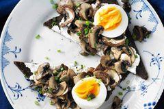 Heißer Tipp für Pumpernickel: Geröstet ist es noch mal so gut. Hier wird es mit gebratenen Pilzen, körnigem Frischkäse und gekochtem Ei belegt. Kapern sorgen für raffinierte Würze.Zum Rezept: Pilztatar auf Pumpernickel