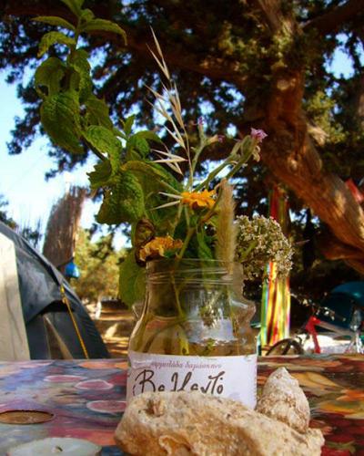 Griechenland: Kykladen-Insel Antiparos