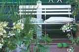 Gartenbank und Pflanzen
