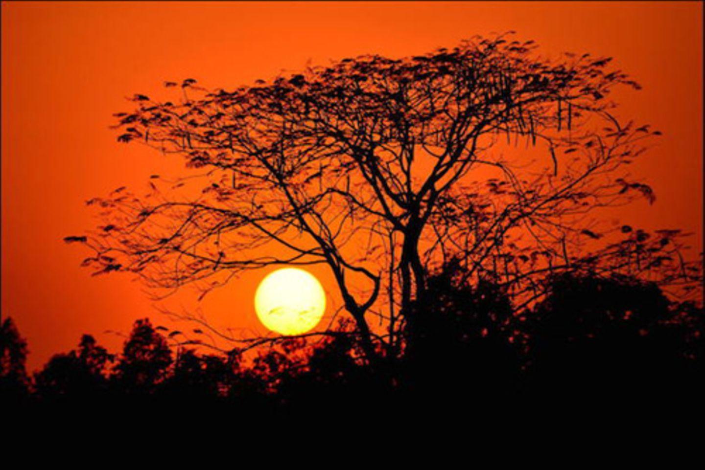 """""""Sunset at Summer"""" in Bishnupur, Indien."""