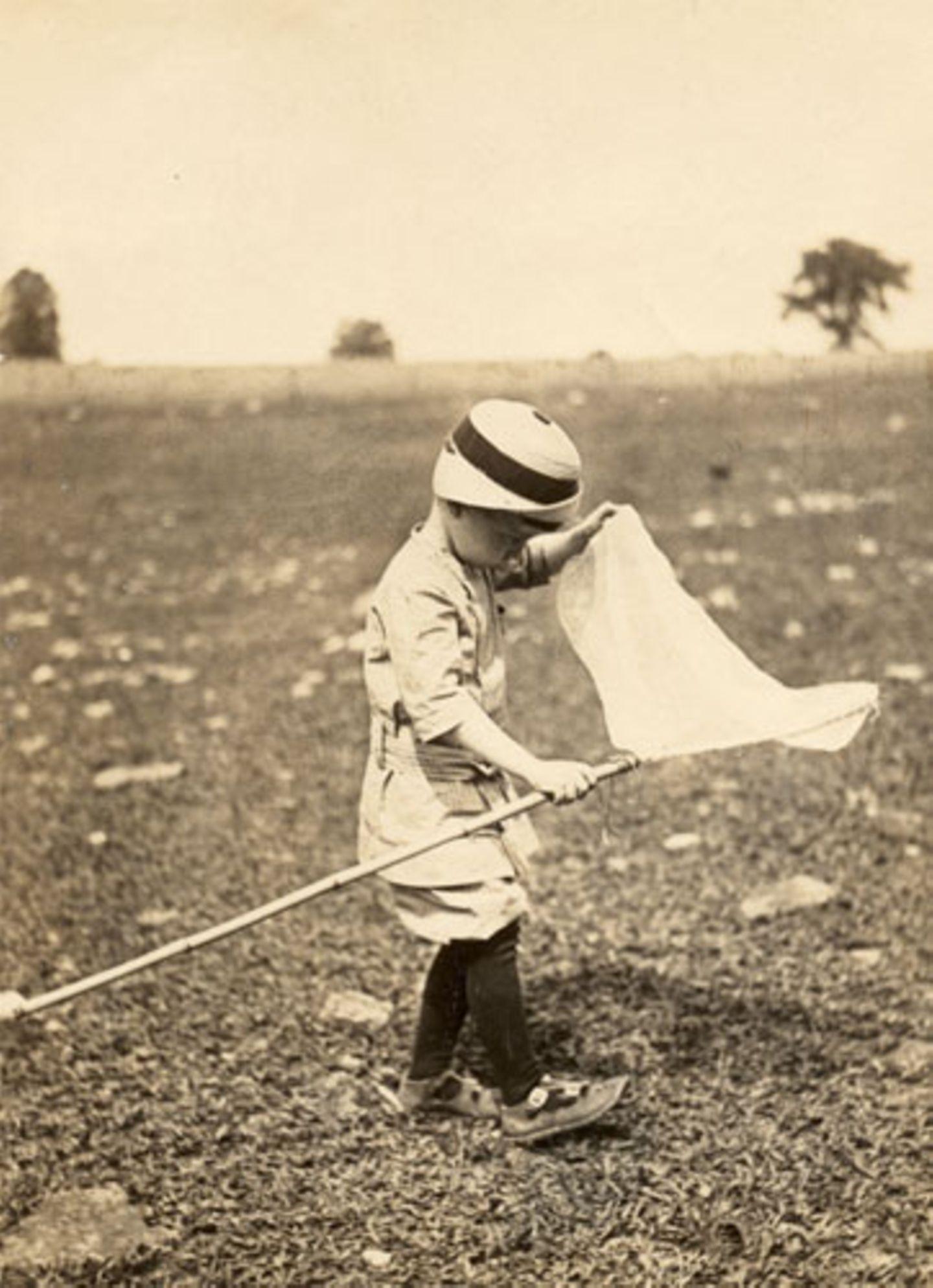 1913: Fang das Tier