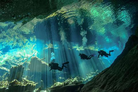 Wie eine fremde Welt: Magische Unterwasseraufnahmen