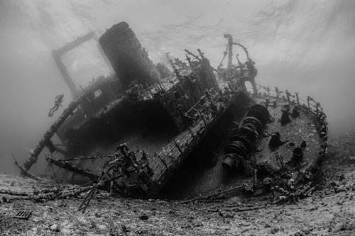 """""""Underwater Photographer of the Year"""": """"The Ghostly Giannis D"""" von John Parker entstand durch Hartnäckigkeit: Zweimal tauchte der Fotograf zu diesem geisterhaften Wrack herunter, nur um später festzustellen, dass der Auslöser seiner Kamera defekt war. Beim dritten mal aber war der Fluch gebrochen.     www.upylondon.com"""