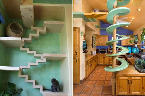So sieht es aus, wenn Katzen ein Haus einrichten dürften