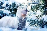 Bei Eis und Schnee sollte man sich einen Schal anziehen. Oder an ein flauschiges Lama kuscheln.