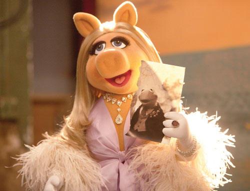 Miss Piggy Federboa Kermit-Portrait
