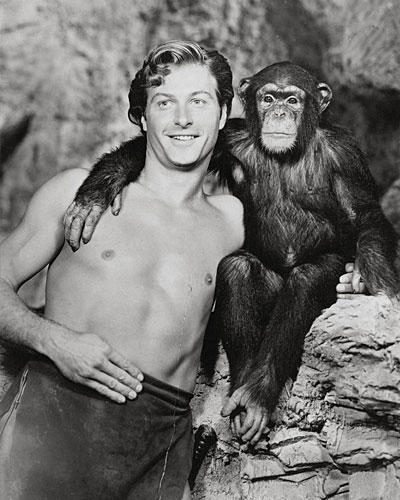 """Aufgedreht: Affe Cheeta aus den """"Tarzan""""-Filmen"""