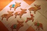 """""""Mir ist da eine zahme Elchherde zugelaufen"""", schreibt Vera Richert-Schydlo. Die Elche mit bunten Decken, Schals und Lichterketten sind liebevoll mit Zuckerguss dekoriert. """"Am wohlsten fühlen sich die lieben Tiere in Folie verpackt auf den Weihnachtsgeschenken"""", sagt die Bäckerin."""