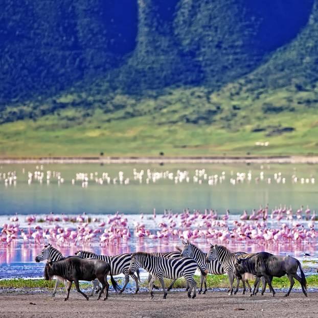 Tansania: Ngorongoro-Krater