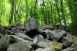 Odenwald: Felsenmeer
